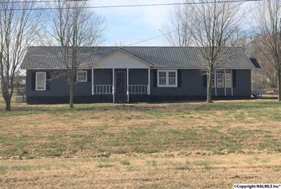 439 County Road 400, Fyffe, AL 35971 - #: 1109023
