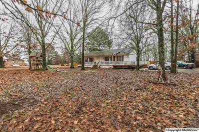 230 Jo-Mar Road, Ardmore, AL 35739 - #: 1109025