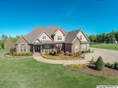 25608 Old School House Road, Toney, AL 35773 - #: 1109157