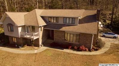 2401 Wyeth Drive, Guntersville, AL 35976 - #: 1109196