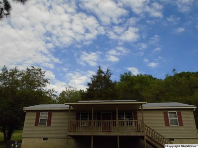 2100 Rock Hill Road, Guntersville, AL 35976 - #: 1109445