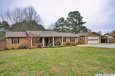 27 Lucy Avenue, Decatur, AL 35603 - #: 1109564