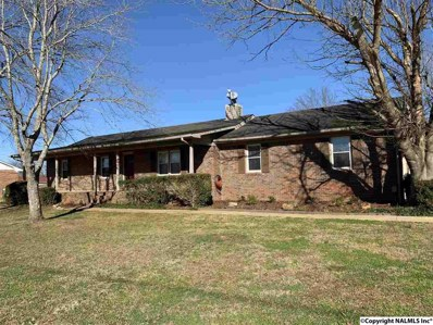 159 Ready Section Road, Hazel Green, AL 35750 - #: 1109705