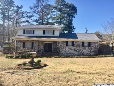 402 Willowbrook Avenue, Glencoe, AL 35905 - #: 1110011