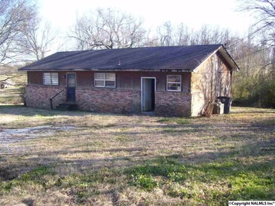 3110 County Road 214, Hillsboro, AL 35643 - #: 1110139
