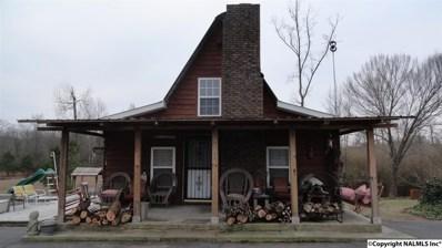 137 Jack Morrow Road, Guntersville, AL 35976 - #: 1110213