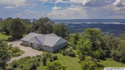 110 Overlook Drive, Section, AL 35771 - #: 1110248