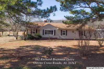 162 Richard Brannum Drive, Owens Cross Roads, AL 35763 - #: 1110284