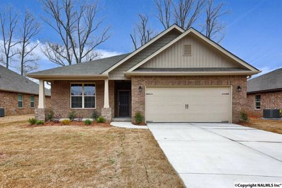 122 Summer Pointe Lane, Madison, AL 35757 - #: 1110296