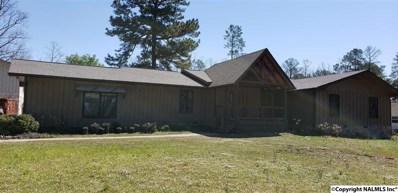 950 County Road 380, Centre, AL 35960 - #: 1110386