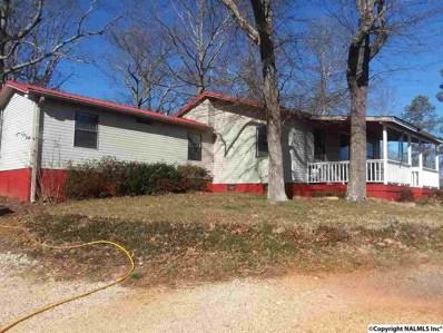 110 County Road 481, Collinsville, AL 35961 - #: 1110419