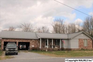 192 Gray Road, Mentone, AL 35984 - #: 1110832