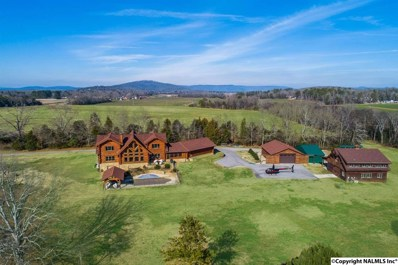 424 Paint Rock Road, New Hope, AL 35760 - #: 1110841