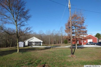 2151 County Highway 35, Horton, AL 35980 - #: 1110914