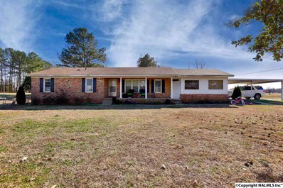 846 Ready Section Road, Hazel Green, AL 35750 - #: 1111162