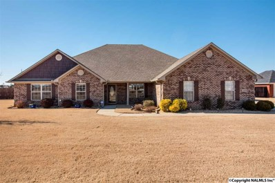 13888 Summerfield Drive, Athens, AL 35613 - #: 1111326