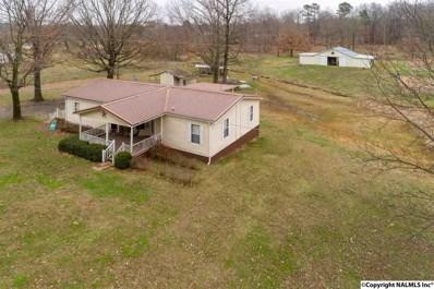 370 County Road 49, Mount Hope, AL 35651 - #: 1111346