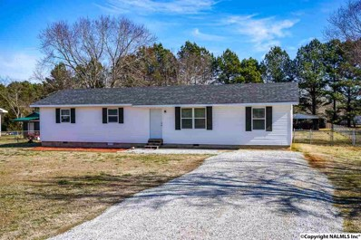 19278 East Limestone Road, Toney, AL 35773 - #: 1111347