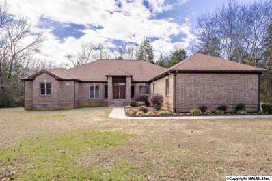 5103 Renee Road, Huntsville, AL 35810 - #: 1111428