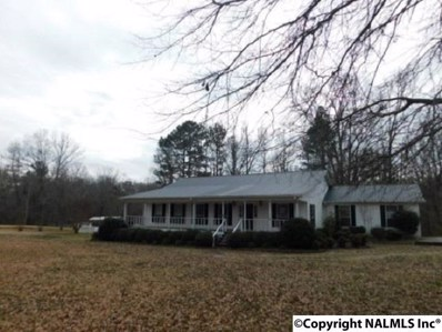 6675 Rocky Ford Road, Hokes Bluff, AL 35903 - #: 1111541