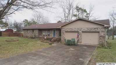 228 Wells Road, Meridianville, AL 35759 - #: 1111591