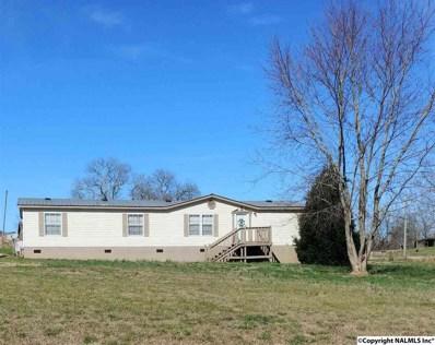 561 Bristow Creek Trail, Altoona, AL 35952 - #: 1112093