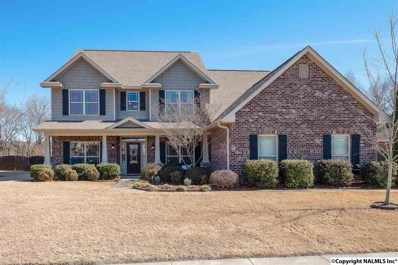 116 Harbor Glen Drive, Madison, AL 35756 - #: 1112230