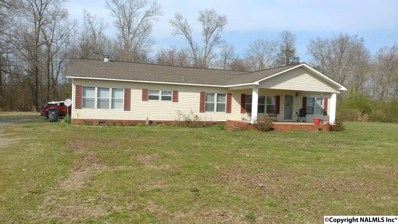 1548 County Road 380, Boaz, AL 35957 - #: 1112239