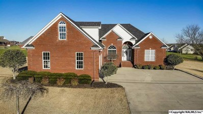525 Thompson Avenue, Rainsville, AL 35986 - #: 1112562