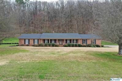 6496 Spring Creek Drive, Guntersville, AL 35976 - #: 1113053