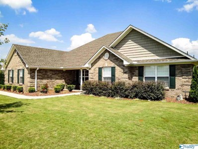 13672 Summerfield Drive, Athens, AL 35613 - #: 1113171
