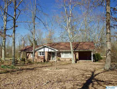 4240 Old Highway 9, Cedar Bluff, AL 35959 - #: 1113484