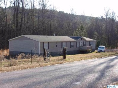 2005 Vaughn Road, Altoona, AL 35952 - #: 1113668