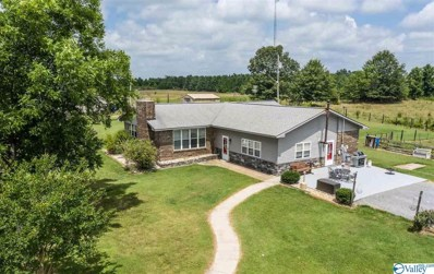 255 County Road 432, Fyffe, AL 35971 - #: 1113788