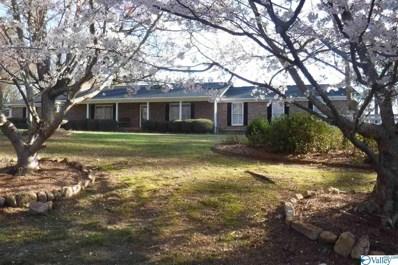 5301 Jackson Trail, Guntersville, AL 35976 - #: 1114075