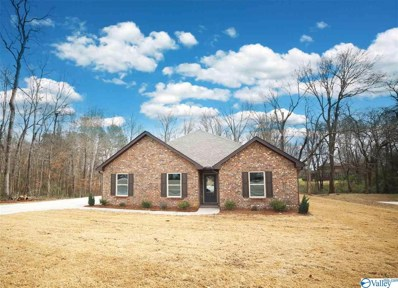 206 Condah Court, Hazel Green, AL 35750 - #: 1114079