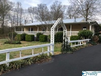 4166 County Road 44, Leesburg, AL 35983 - #: 1114188