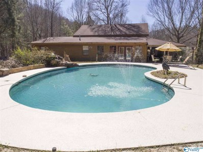 3851 Hixon Road NW, Fort Payne, AL 35967 - #: 1114209