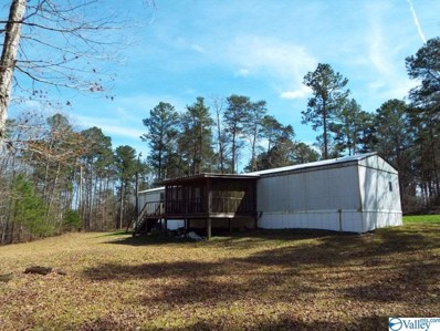 339 County Road 245, Fort Payne, AL 35967 - #: 1114340