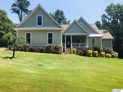 230 River Pointe Drive, Guntersville, AL 35976 - #: 1114683