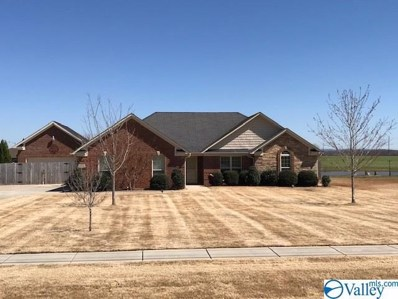 145 Jimmy Fisk Road, Hazel Green, AL 35750 - #: 1114704