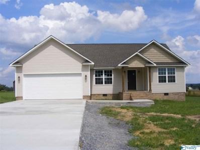 1151 Parker Avenue SE, Rainsville, AL 35986 - #: 1114753