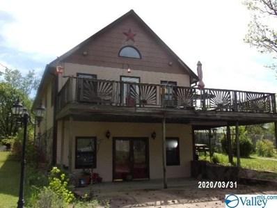 4130 Bachelors Chapel Road, Hokes Bluff, AL 35903 - #: 1115776