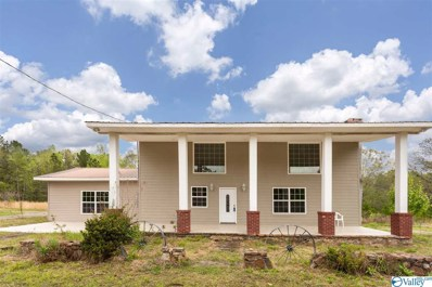 600 Goldenrod Avenue, Gadsden, AL 35901 - MLS#: 1116078