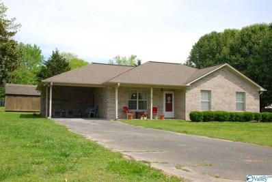 31 Marion Lane, Fyffe, AL 35971 - #: 1116660