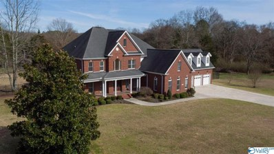15350 Pepper Creek Road, Harvest, AL 35749 - MLS#: 1116676