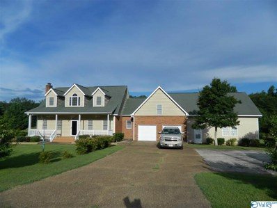662 Palmer Road, Valley Head, AL 35989 - #: 1116686