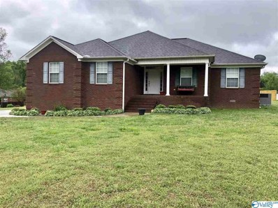 355 Stoney Mountain Drive, Guntersville, AL 35976 - #: 1116922