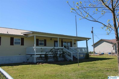 353 Olinger Road, Scottsboro, AL 35769 - #: 1117021