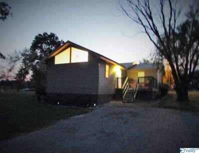 757 County Road 372, Hillsboro, AL 35643 - #: 1117039